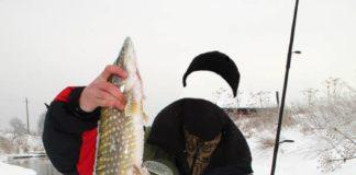 PSD мужской шаблон - рыбак с щукой