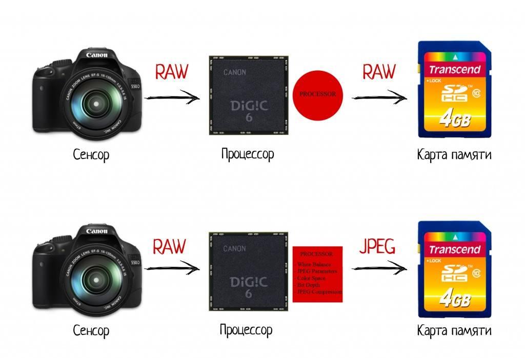 Что такое RAW формат, в чем его отличия от JPEG и зачем он вообще нужен