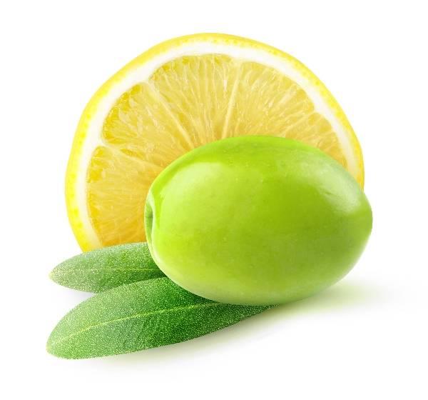 Фото Лимон + оливка + мята на белом фоне