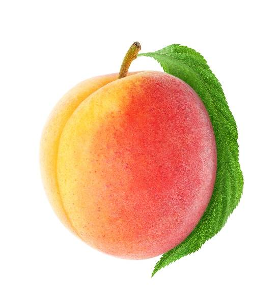 Персик на белом фоне фотография