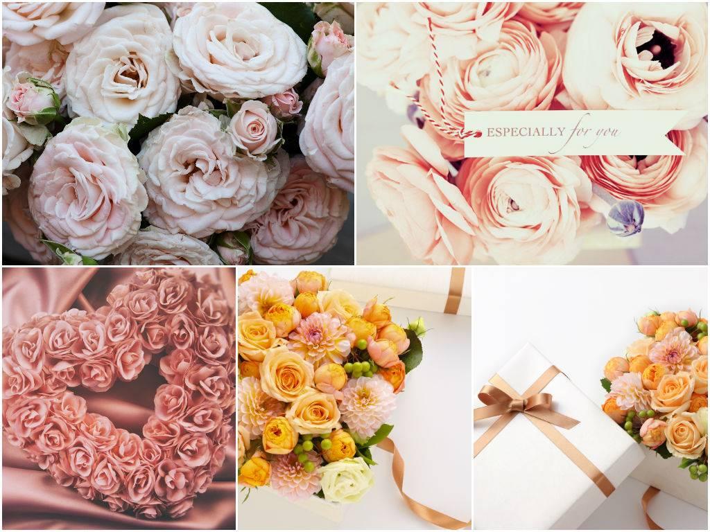 Цветы - нежные розы - растровый клипарт фонов