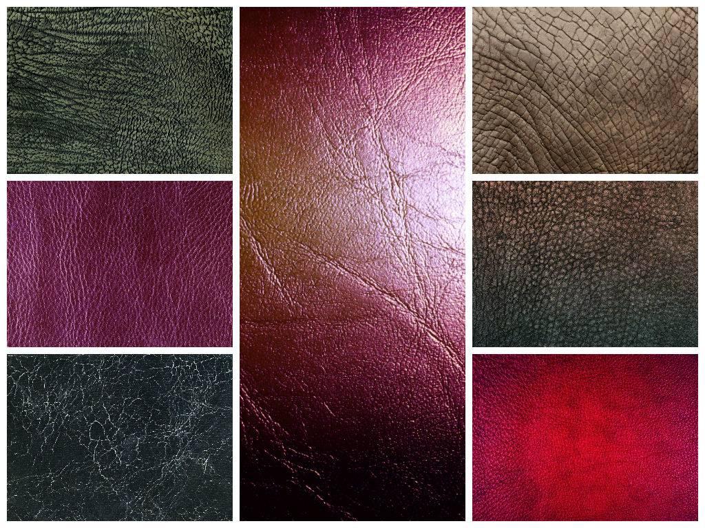 Текстуры кожи животных для фотошопа скачать с торрента 79 штук