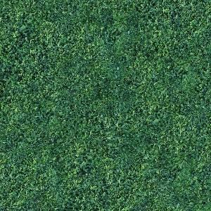Текстура зеленой травы