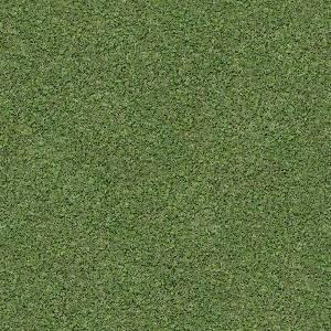 Текстура зеленой травы 2