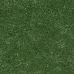 Текстура зеленой травы 3