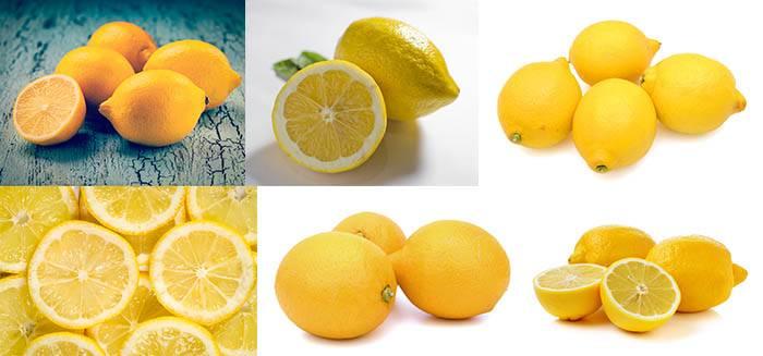 Набор фотографий лимона на белом фоне - Растровый клипарт