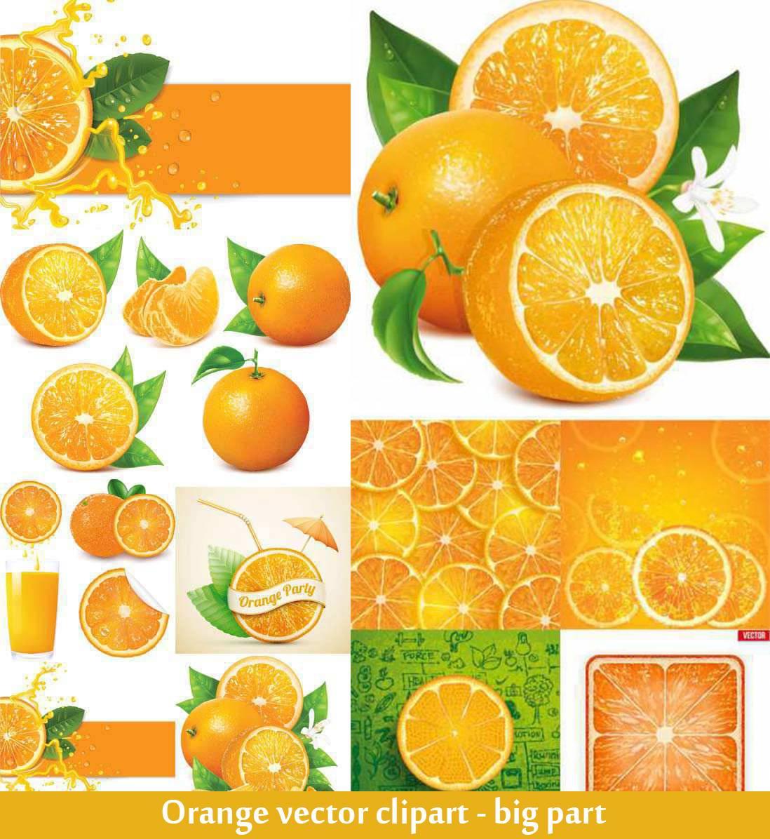 Orange-Clipart-big-part-on-white-background