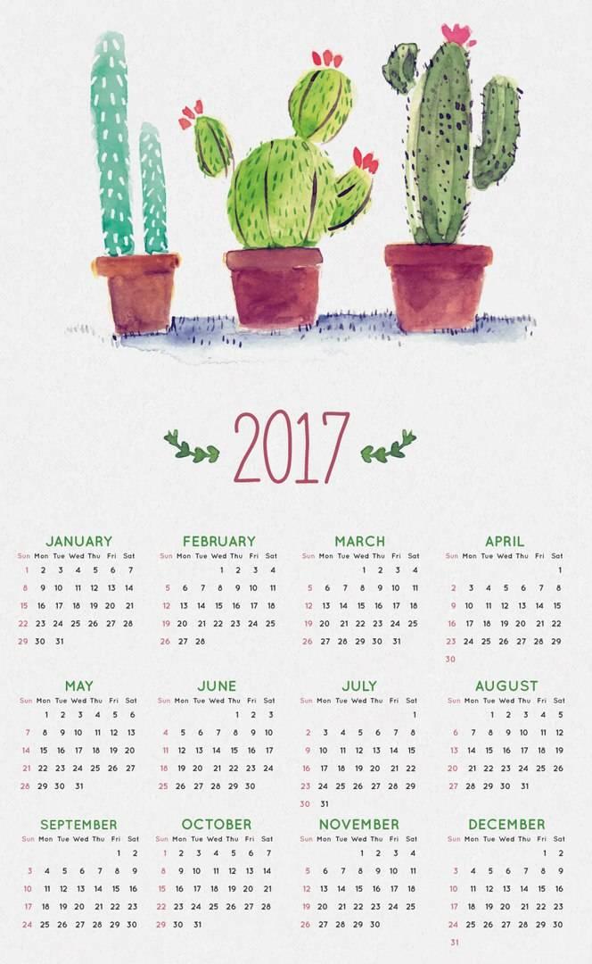 vektornyj-shablon-kalendarya-na-2017-god-8