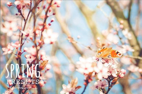 Пресеты для Lightroom - Весенние и солнечные пресеты 3